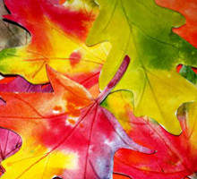Watercolor Leaves Art Lesson